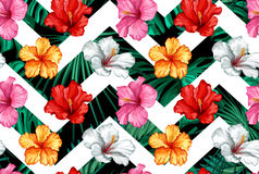 Vector tropical leaves, hibiscus seamless pattern. Vector tropical leaves with realistic colored hibiscus seamless pattern on simple white geometric lines Stock Images
