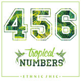 Vector tropical numbers for t-shirts, posters, card and other uses. Sport chic. Trendy style Stock Photos