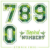 Vector tropical numbers for t-shirts, posters, card and other uses. Sport chic. Trendy style Stock Photography