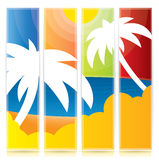 Vector tropical palm tree banner set. In different color variations Royalty Free Stock Photo