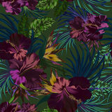 Vector tropical pattern. Amazing vector tropical flowers patten. seamless design with gorgeus botanical elements, hibiscus, palm, bird of paradise. Vector Stock Images