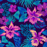 Vector tropical pattern with orchids. Dark vector tropical pattern. seamless botanical design Royalty Free Stock Image