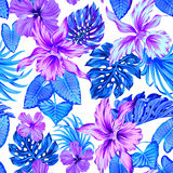 Vector tropical pattern with orchids. Stock Images