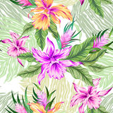 Vector tropical pattern with orchids. Seamless vector tropical pattern with orchids and ficus leaves, and palms. Pastel gentle colors, aloha textile style Royalty Free Stock Photo