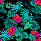 Vector tropical pattern with palms and hibiscus . Stock Images