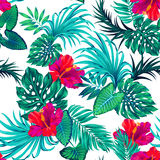 Vector tropical pattern with palms and hibiscus flower. Amazing vecgtor tropical pattern with hibiscus flowers and palm and monstera leaves. seamless repeating Stock Photos