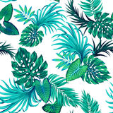Vector tropical pattern with palms Stock Images