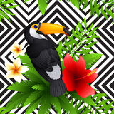 Vector tropical pattern with toucan and  hibiscus Stock Photo