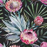 Vector tropical protea pattern Stock Photography