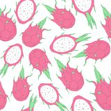 Vector tropical seamless pattern with dragon fruit on the white Stock Photo