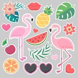 Vector  tropical stickers Stock Images