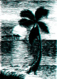 Vector tropical summer black and blue illustration with palm tre Stock Photos