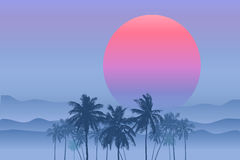 Vector Tropical sunrise. Tropical sunrise with pink gradient sun and silhouette of palm trees and mountains in the background of blue sky Stock Images