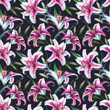 Vector tropical watercolor lilly pattern Stock Image