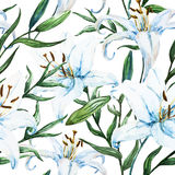 Vector tropical watercolor lilly pattern royalty free illustration