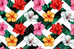 Vector tropische bladeren, hibiscus naadloos patroon Stock Afbeeldingen