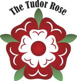 Vector Tudor rose Royalty Free Stock Photos