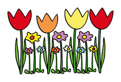 Vector tulips Royalty Free Stock Image
