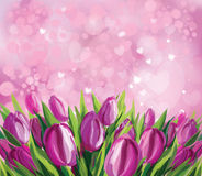 Vector  tulips background. Royalty Free Stock Photo