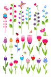 Vector tulips and bluebell. Set Royalty Free Stock Photo