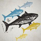 Vector Tuna fishes in abstract composition. Stock Images