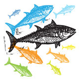 Vector Tuna fishes in abstract composition. Royalty Free Stock Images