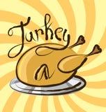 Vector Turkey Stock Photo