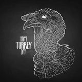 Vector turkey head. Drawn in line art style. Thanks giving day design element isolated on the chalkboard Stock Image