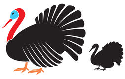 Vector turkey Royalty Free Stock Photography