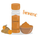 Vector turmeric illustration isolated in cartoon style. Herbs and Species Series Stock Image