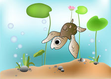 Vector of a turtle scene underwater Stock Photo