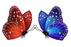 Vector twee vlinders in liefde Stock Foto