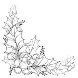 Vector twig with outline leaves and berries of Ilex or Christmas Holly . Traditional Christmas and New Year symbol in contour style for winter design and Stock Photography