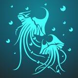 Vector two medusas. On the dark blue background. Eps10 Stock Image