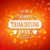 Vector typography design Thanksgiving  Blurred and Stock Photography