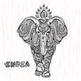 Vector uitstekende Indische olifantsillustratie Royalty-vrije Stock Afbeelding
