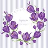 Vector ultravioleta de la guirnalda de las flores del azafrán Fondos de la primavera libre illustration