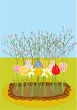 vector un macizo de flores con los tulipanes, narcissuses, diafragma Foto de archivo libre de regalías