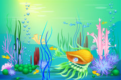 Vector Undersea world with a golden seashell and fish. Different seaweeds and a blue pearl Stock Photography