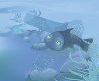 Vector Underwater illustration with cute fish Royalty Free Stock Image