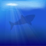 Vector underwater scene Royalty Free Stock Photos