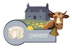 Vector a vaca da imagem no fundo de uma casa com um camembert do gramado e do queijo fotografia de stock
