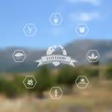 Vector vage achtergrond met natuurvoedingpictogrammen Royalty-vrije Stock Foto's