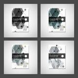 Vector van de de Brochurevlieger van het jaarverslagpamflet het malplaatjeontwerp, het ontwerp van de boekdekking Abstract hexago Royalty-vrije Stock Foto's