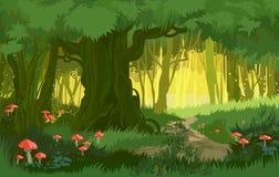 Vector van de illustratie heldergroene zomer magische bos vectorpaddestoelen als achtergrond Stock Afbeeldingen