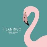 Vector van een flamingoontwerp op blauwe achtergrond Stock Foto
