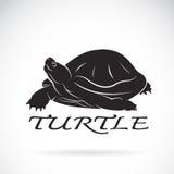 Vector van een schildpad op witte achtergrond stock illustratie
