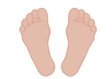 Vector van een voet voeten op een witte achtergrond Stock Afbeelding