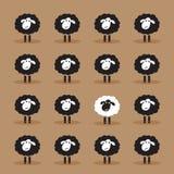 Vector van enige witte schapen in zwarte schapengroep Royalty-vrije Stock Afbeeldingen