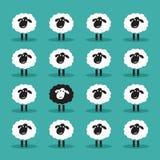 Vector van enige zwarte schapen in witte schapengroep Stock Afbeelding